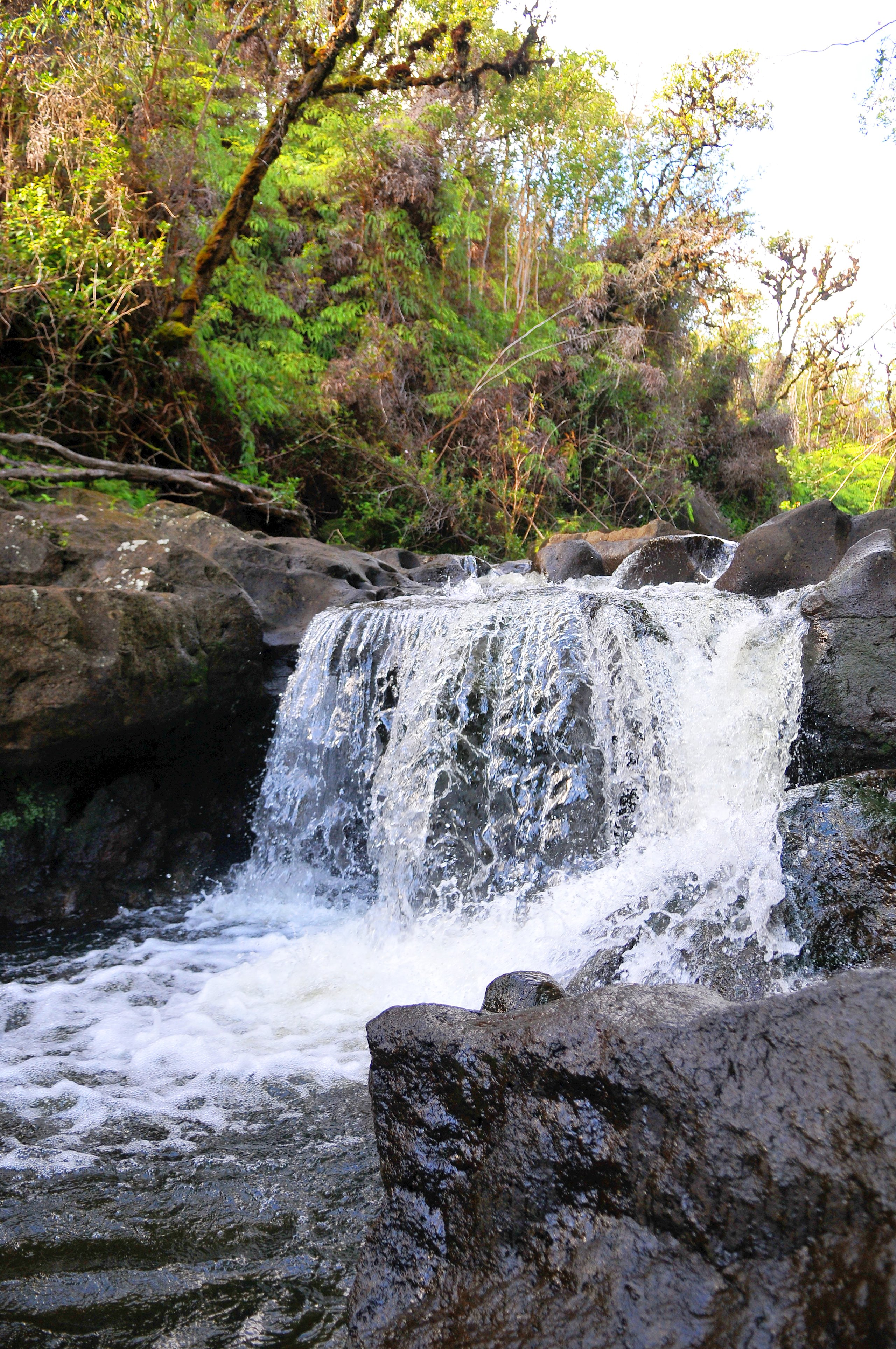 Easily accessible swimming & waterfalls