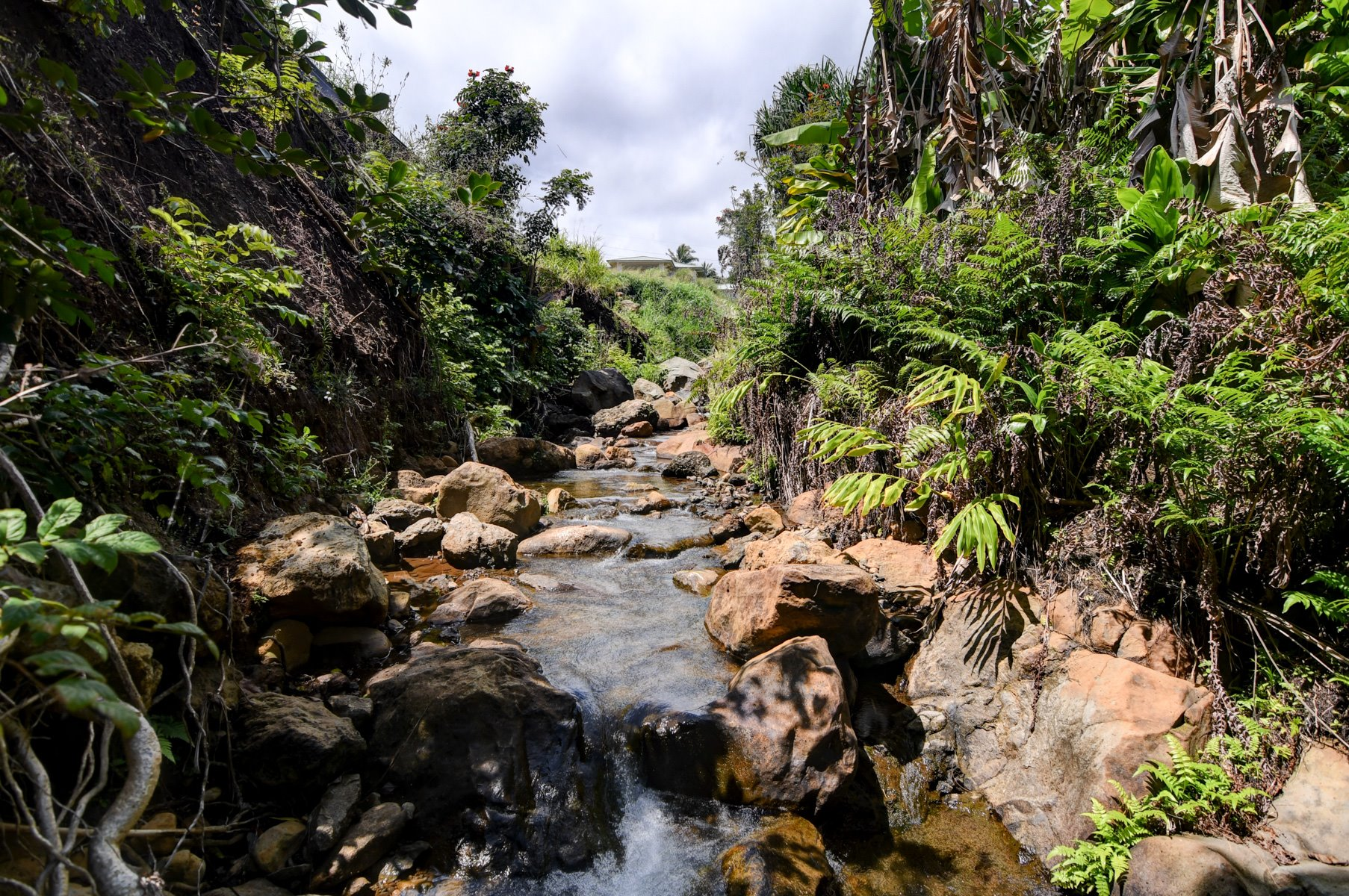 The bordering stream