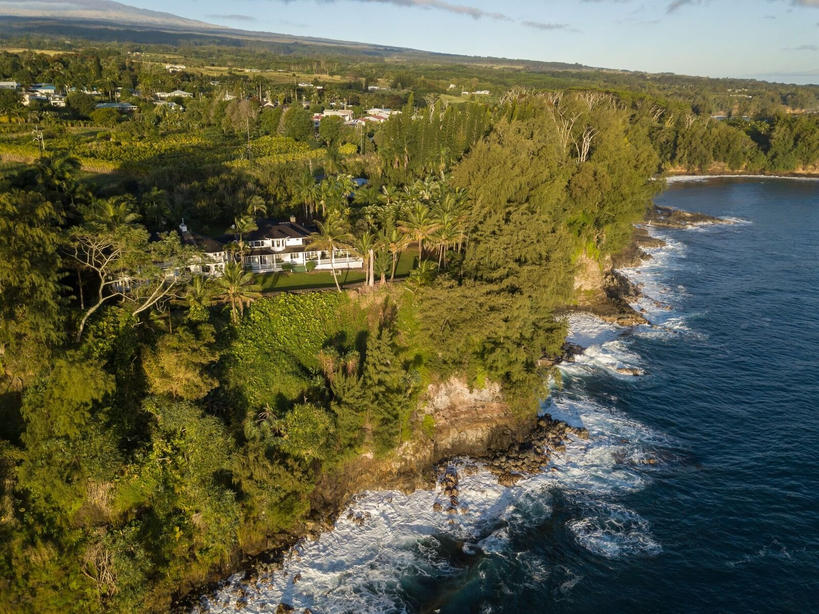Currently operating as the Palms Cliff House B&B, Sellers will consider a sale of the business with an acceptable offer for the real estate or, at an additional cost with a purchase of the real estate.