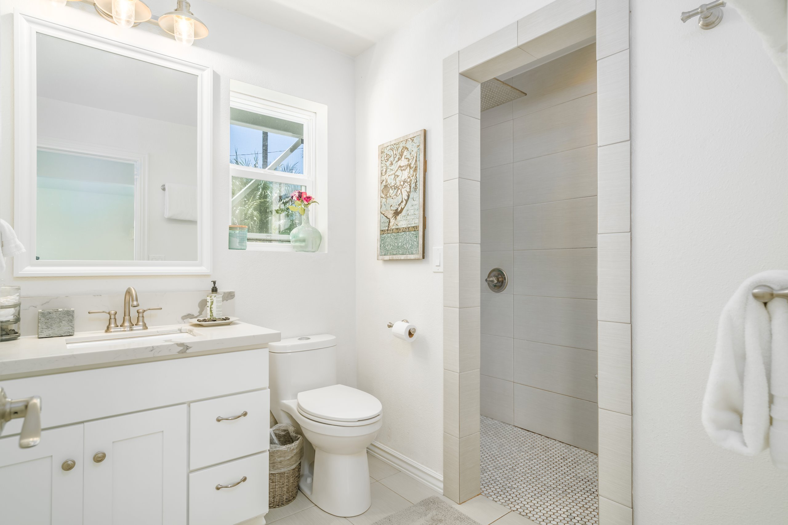 Downstair bathroom features giant ceiling mounted shower head creates a waterfall effect!