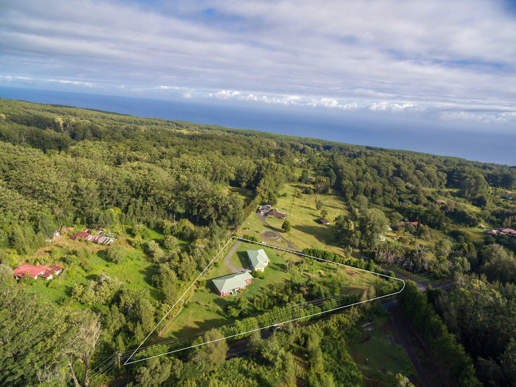 This area has multiple Farmers' Markets a week, 2 award winning college preparatory schools, Hawaiian Immersion Charter Schools, Kamehameha Pre-School, well-established home school communities and North Hawaii Community Hospital