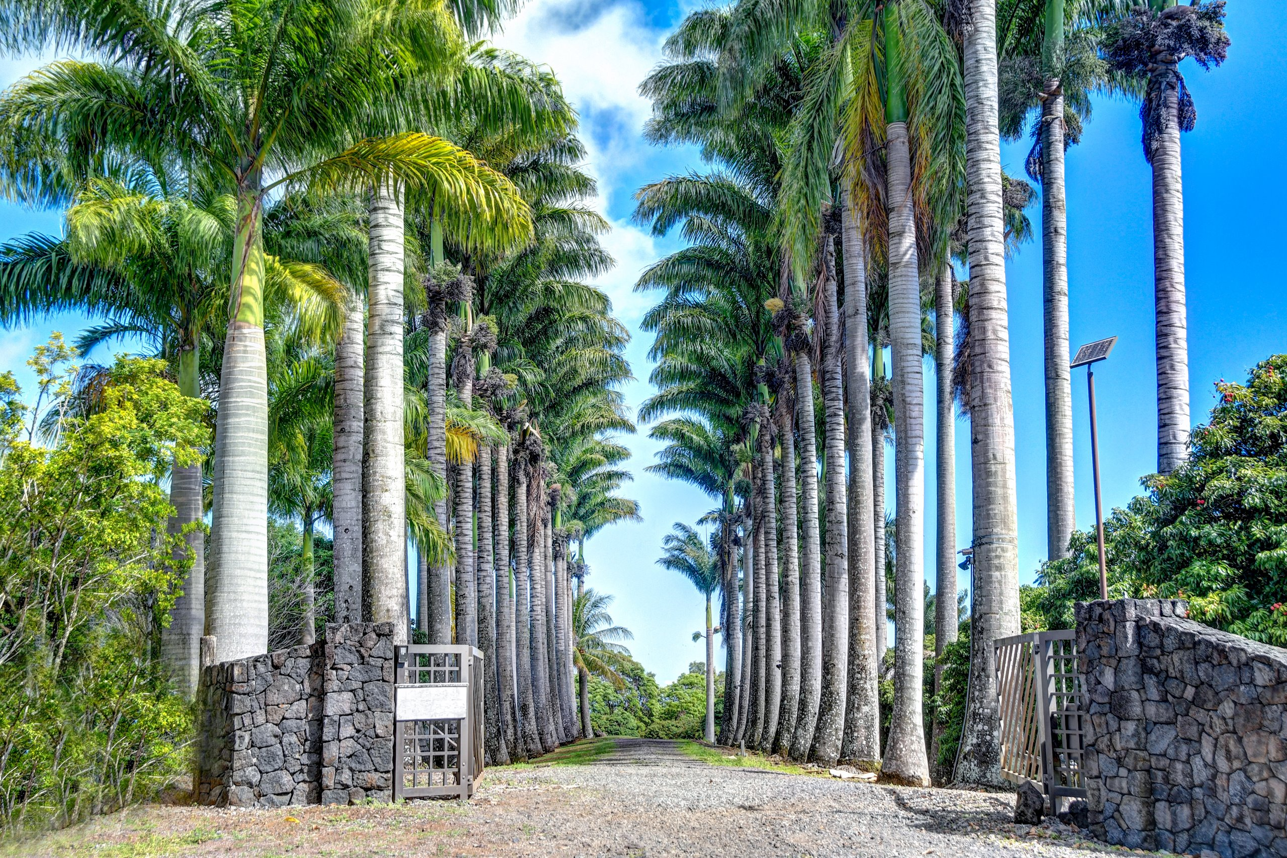 Enter through the gates of The Royal Palms Estate and you feel as if you are stepping back in time to an era of elegance and royal privilege.  The palm lined driveway is a botanical wonder and beckons you to venture beyond and experience the energy and majesty of the mature 50+ foot Royal palms. More luxury than you might imagine lies within this gate. This 12.8-acre property located on the lush Hamakua coast of the Big Island was created to be a place where Hawaii and life exists beyond resorts and golf courses and provides you with a place where no one can find you if that is what you want.  You will retreat within this private estate with unexpected upscale amenities for your comfort and pleasure.  The main house consists of approx. 3,936 sqft. with four large master suites all with luxurious double size baths and each with a different theme and views of the ocean and gardens.  At the heart of the property is an oversized heated, custom designed infinity edge pool with a lava rock waterfall and a swim up bar with three underwater bar stools and a full back bar! The total open lanai and covered lounge area is approx. 3,760 sqft. of recreational space; larger than the house! Additionally, there is a one bedroom one bath pool house bringing total bedrooms and baths to 5/5.5. On the ocean side of the home is the spacious main living area, home theater, kitchen and dining room all with 180-degree views of the Pacific Ocean.  Watch the sunrise daily while enjoying the cool trades off the ocean side lanai.  The huge kitchen will delight with granite counters galore, newer appliances, and an open design. The landscaping is expansive with tropical foliage and abundantly producing fruit trees: coconuts, oranges, lemons, and starfruit. The farm itself produces over 10,000 pounds of lychee annually for income to offset maintenance.  On the property behind the main house you will discover a historic, 100-year old donkey barn dating back to the early sugarcane days.
