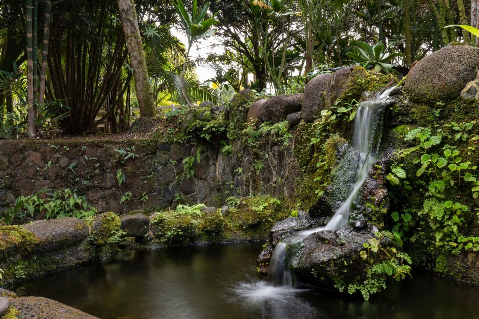 The landscaping and gardens are extensive including a man-made water fall and pond system.