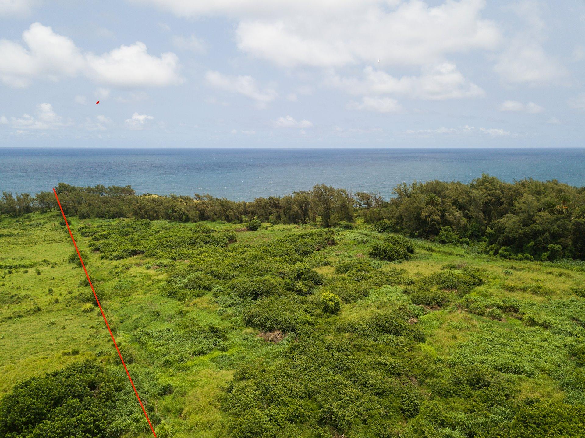Distant views of Maui