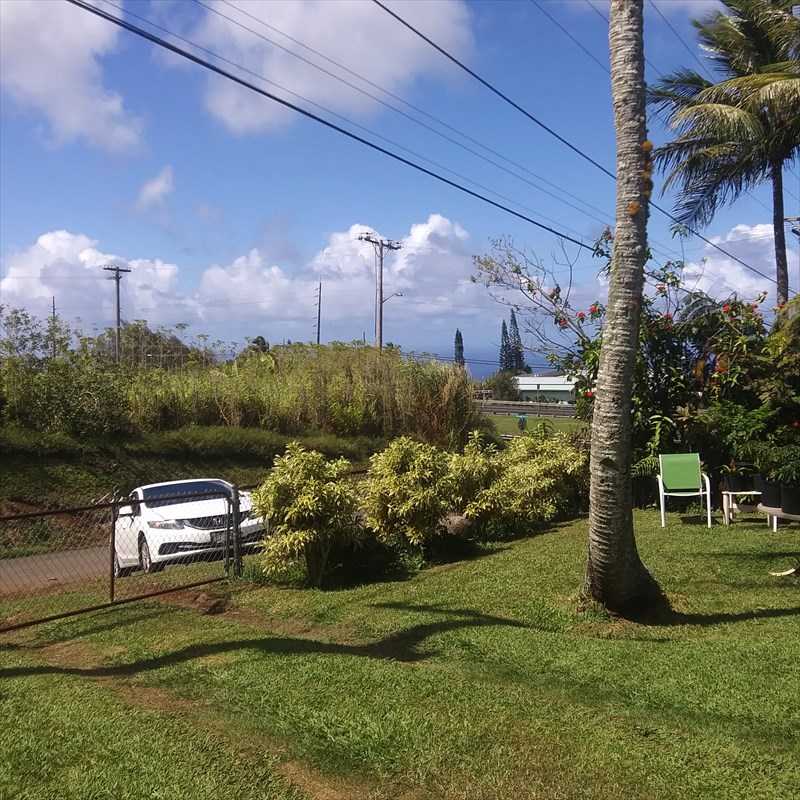 Wonderful opportunity to own a home in Honoka'a vs. paying rent.  Great location with no houses across the street. Ride your bike or walk to Honoka'a town.  Plenty of room for a garden and fenced yard for your dog or kids to run around.  <br>House needs some TLC.<br>* Large 12,175sf yard with chain link fence surrounding the house.<br>*Move in ready- currently tenant occupied.  Please do not disturb tenants. 48 hours notice to show.  Pre-qualified buyers only please.<br>Property to be sold as-is.   Live in and fix up to your taste.