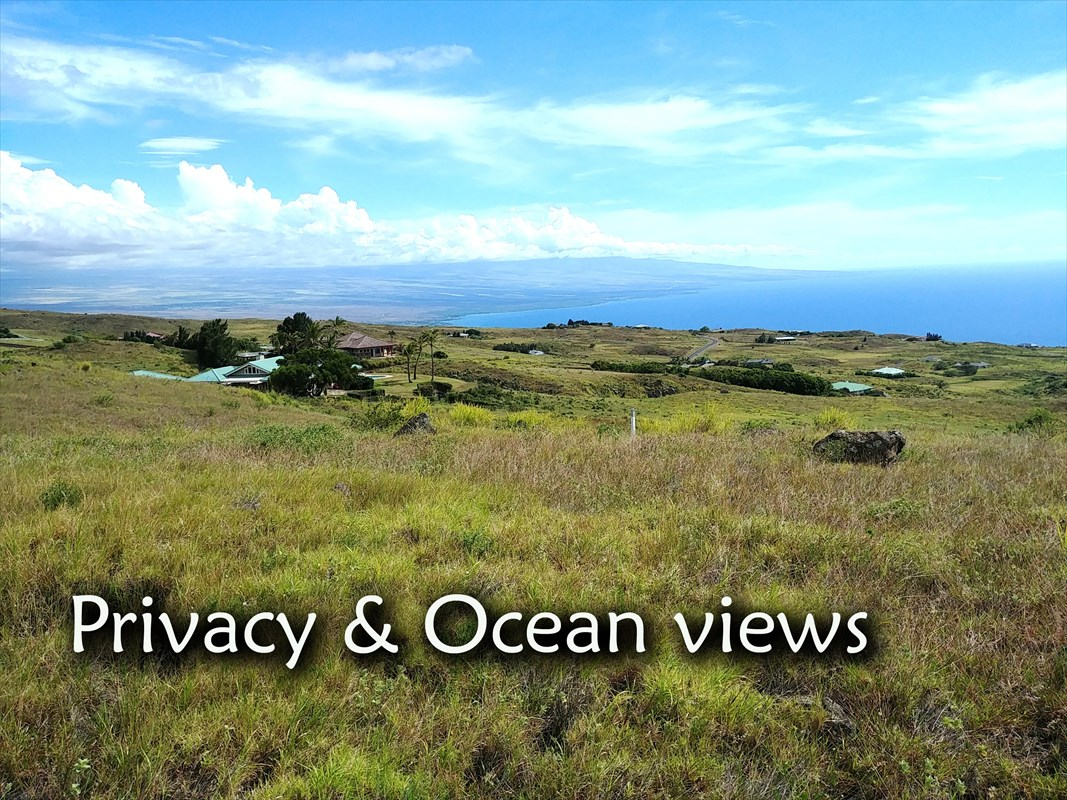 In the Meadows section of Kohala Ranch on the Big Island of Hawaii, this may be the best ocean view lot now available. A natural building site gives unblockable views toward Kona and across the sea to the sunset. An exceptional value offered at a very competitive price.