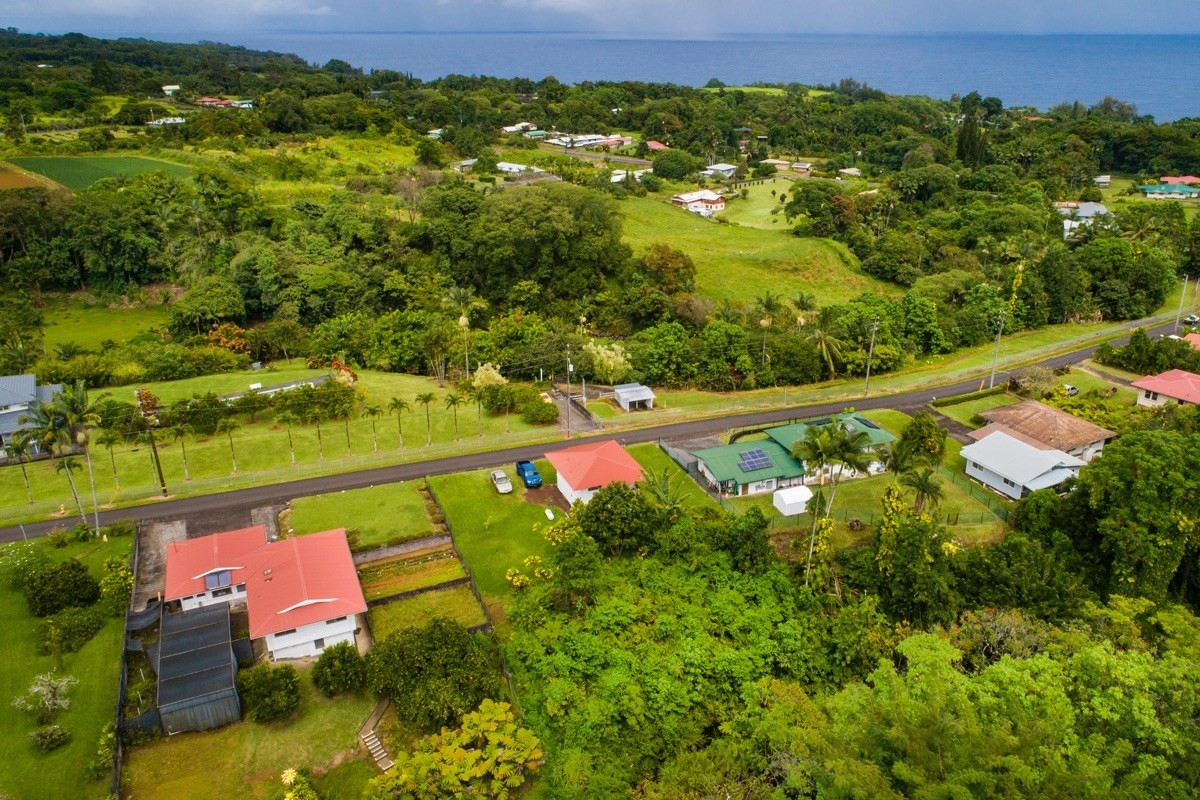 This gem is located in the Papaikou community just outside of Hilo. Property sits up high and boasts both ocean and mountain views. Listen to the soothing sounds of the Ka'ie'ie stream, that backs up to the property. Refinished floors, newly painted inside and out, recently renovated with upgraded electrical and plumbing. Roof was redone in 2015. Downstairs basement has lots of potential with additional bathroom and space to make a separate living area. Charming and well kept, this home is waiting for your own personal touch.