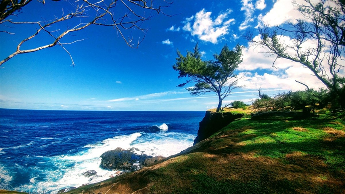 "With spectacular views of Maui Island & the sea, this very private 21.4 acre property has two separate cottages & offers a variety of ownership options:<br><br>   1/ This is a spectacular location to build your island country home in safe & friendly North Kohala <br><br>   2/ Earn $42,000+/yr rental income from the two cottages + property value growth each year (total of perhaps 8+% per year?)<br><br>The smaller cottage is located on the upper portion of the property. It could produce $1,500/month rental income or can be the location of a new main residence. The 2nd cottage is located downhill&mdash;-Seller may be interested in leasing back one of the cottages for 1-2 years. Total rental income potential of both cottages = $3,500+ per month. Each cottage has solar power, satellite internet & affordable county water.<br><br>The pure air & fresh ocean breezes are part of a quiet & private country lifestyle. Here in the safe & friendly community of North Kohala, Big Island of Hawaii, the land also has great potential as an agricultural business venture with over 100 mature coconut palms trees&mdash;-also pineapples, avocados, papaya, lemons & tangerines in production. <br><br>The weather is wonderful (approx 35-40 inches per year) which keeps the lawns green & the trees happy. Island tradewinds keep skies clear & the stars sparkle at night. This is a very private, lifelong legacy property here in the area called Honopueo&mdash;- ""the owl's gathering place"".<br><br>Summary of improvements:<br>Ø  2+ miles of graded/graveled & partially-paved agricultural roadways<br>Ø  Two separate farm dwellings of 620 sq ft  & 360 sq ft<br>Ø  Two 3,000 watt photovoltaic solar power systems<br>Ø  Extensive land clearing, electric fencing & pig-wire fencing<br>Ø  Additional storage buildings & Tractor garage<br>Ø  110+ coconut palms & bamboo varieties <br>Ø  County water meter<br>Ø  Satellite internet service<br>Ø  Additional rainwater harvesting system for irrigation<br>and more..."